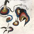 1654.「年長者の丸いクチバシ」