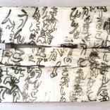 1741.「人糞農法でうんこ革命」ギャラリーに追加しました。