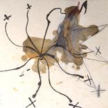 1856.「机の上に星一杯」ギャラリーに追加しました。